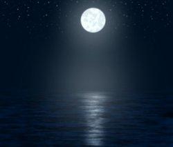 the progressed moon